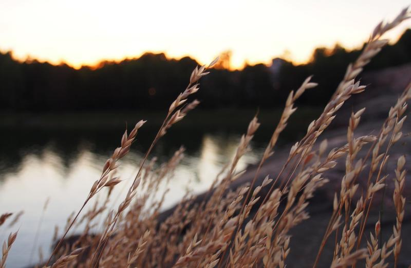 Helsingissä on mahdollista nähdä myös hienoja auringonlaskuja. Perjantaina 21. elokuuta kävimme ihailemassa urbaania iltatunnelmaa Meilahden kallioilla.