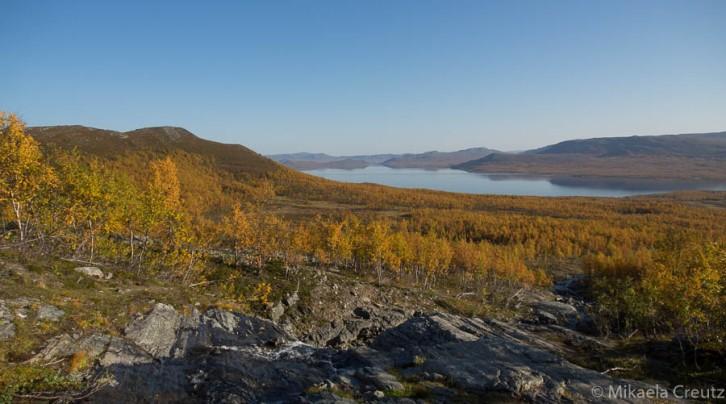 Maisema Kilpisjärvelle Mallan luonnonpuistosta käsin.