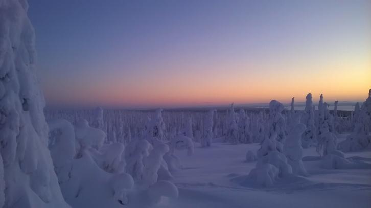 Aurinko kajastaa klo 9:50. Kuva otettu 5. tammikuuta 2015.