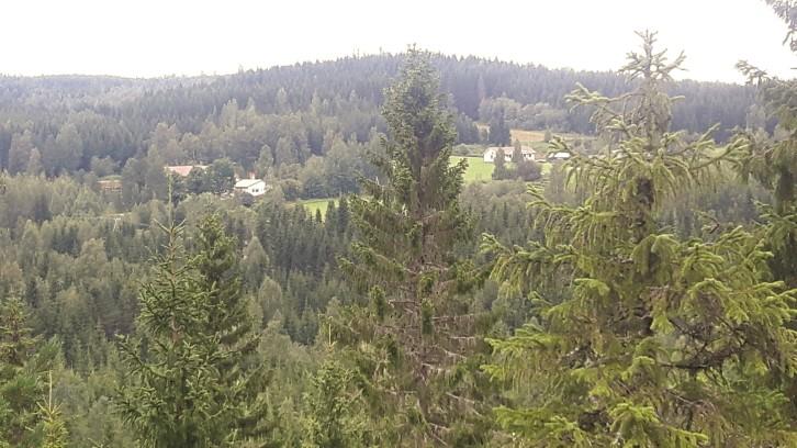 Herajärven kierroksen maalais- ja metsämaisemaa. Hirveän paljon korkeammalle ei reitti kivunnut Herajärven kierroksen länsipuolella.