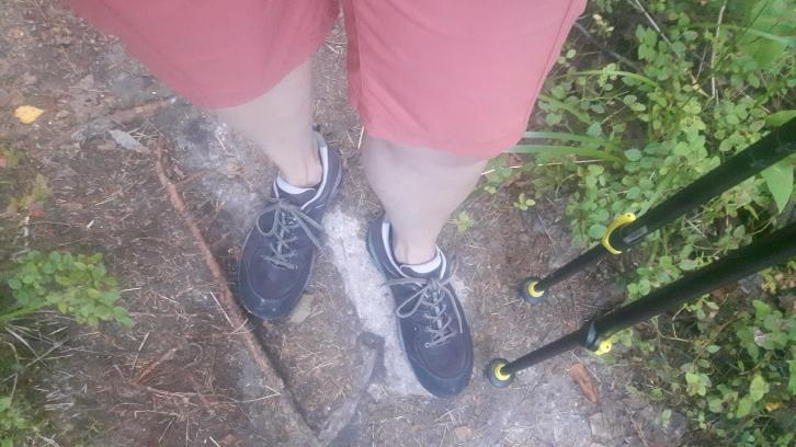 Shortsit korvasivat pitkät vaellushousujen kuumuuden takia. Hyttyset söivät pahiten lähinnä kun pysähdyin puoleksi tunniksi vadelmapensaaseen..