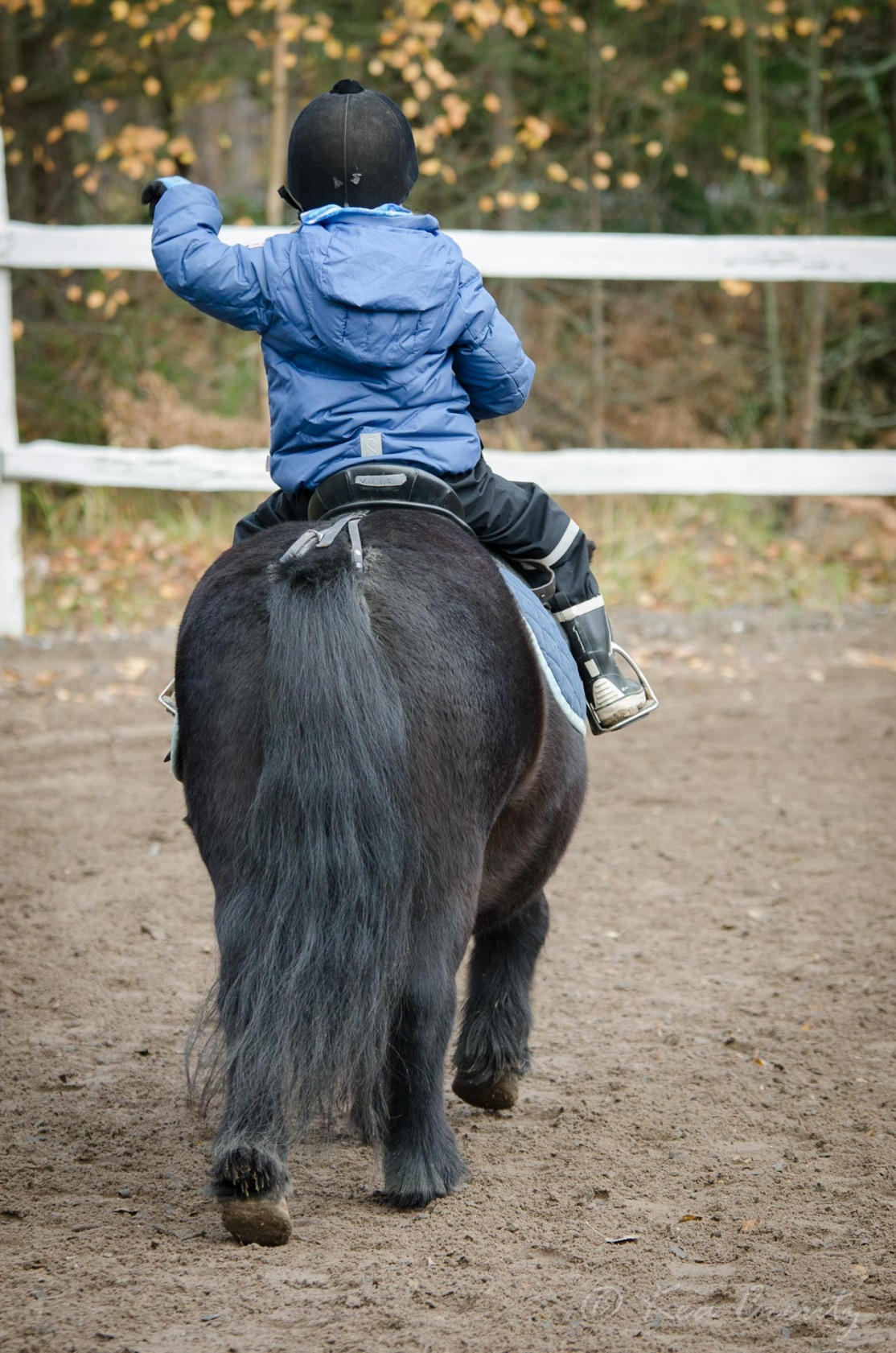 lapset-ratsastaa-6285