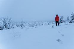 Ääretön ja hiljainen valkoinen maisema