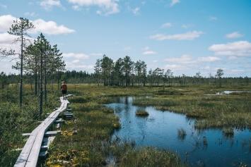 Keväisin Hyöteikön suo tulvii lähes järveksi.